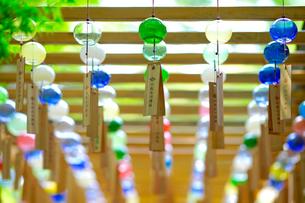 川越 氷川神社の風鈴の写真素材 [FYI01813760]