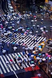 雨の日に大勢の人々が傘をさして渡る渋谷のスクランブル交差点の写真素材 [FYI01813797]