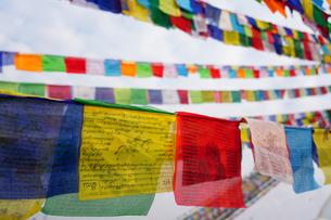 ネパール タルチョの写真素材 [FYI01813886]