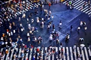 大勢の人々が渡る渋谷のスクランブル交差点の写真素材 [FYI01814118]