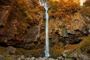 秋の阿弥陀ヶ滝の写真素材 [FYI01814231]