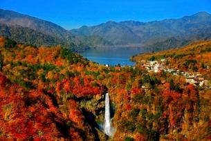 明智平から望む紅葉の盛りの華厳の滝の写真素材 [FYI01814246]