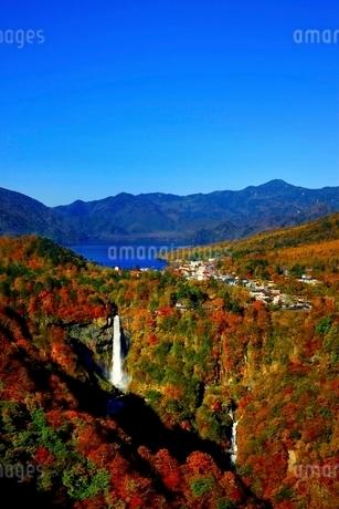 紅葉色づく華厳滝の写真素材 [FYI01814372]