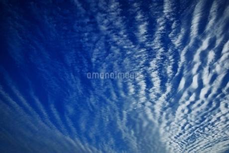 秋空の写真素材 [FYI01814402]
