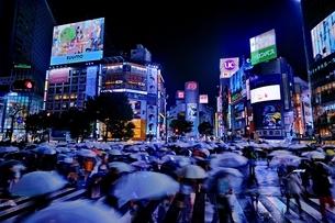 雨の夜に混雑する渋谷スクランブル交差点の写真素材 [FYI01814437]