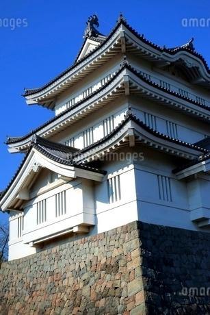 忍城の写真素材 [FYI01814459]