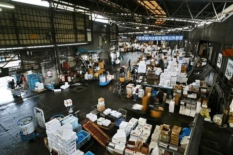 活気ある朝の築地市場の写真素材 [FYI01814477]