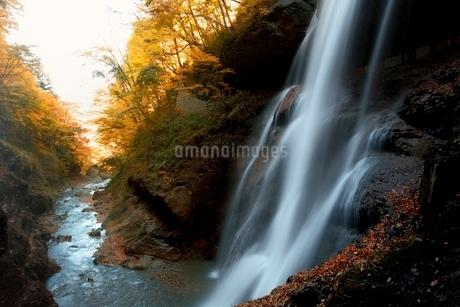 秋の松川渓谷雷滝の写真素材 [FYI01814548]