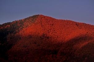 紅葉した乗鞍高原の写真素材 [FYI01814554]