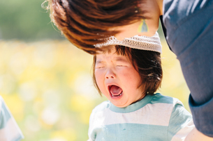 お花畑で泣く少女と母親の写真素材 [FYI01814577]