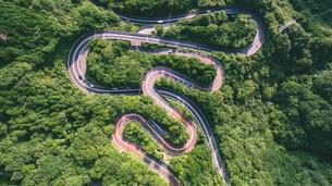 箱根の山道の写真素材 [FYI01814634]