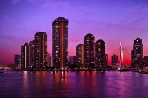 永代橋より望む佃島夜景の写真素材 [FYI01814639]