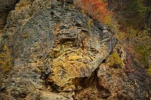 古生層チャートの大しゅう曲の写真素材 [FYI01814733]
