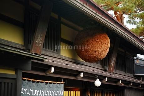 杉玉の写真素材 [FYI01814769]