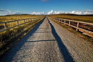 まっすぐに伸びる牧場の道の写真素材 [FYI01814777]