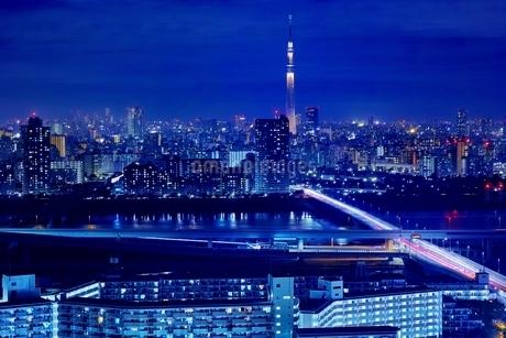 タワーホール船堀より望む東京スカイツリー夜景の写真素材 [FYI01814788]