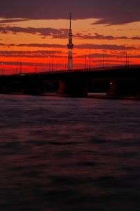 荒川河川敷より望む東京スカイツリー夕景の写真素材 [FYI01814792]