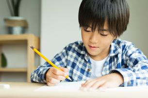 勉強する小学生の男の子の写真素材 [FYI01814985]