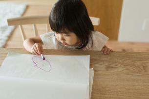 絵を描く女の子の写真素材 [FYI01815038]