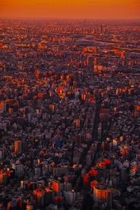 東京スカイツリーより望む都市夕景の写真素材 [FYI01815057]