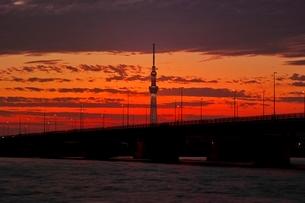 荒川河川敷より望む東京スカイツリー夕景の写真素材 [FYI01815072]