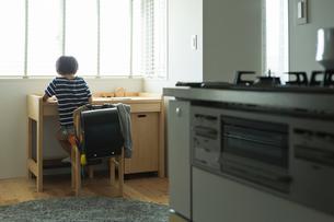勉強する小学生の男の子の後ろ姿の写真素材 [FYI01815338]
