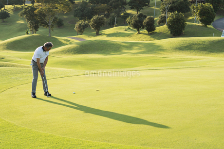 ゴルフをするシニア男性の写真素材 [FYI01815349]