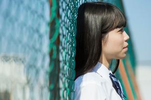 フェンスに寄りかかる女子高校生の写真素材 [FYI01815386]