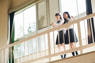 応援する女子高校生の写真素材 [FYI01815463]