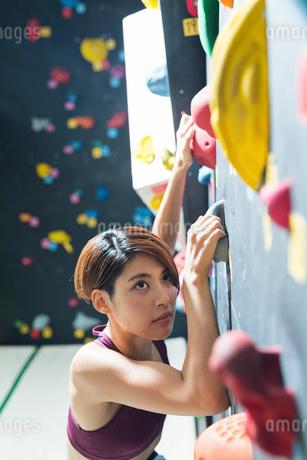 ボルダリングをする若い女性の写真素材 [FYI01815487]