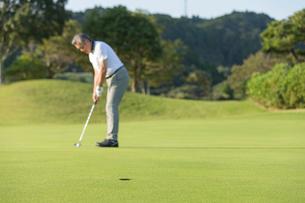 ゴルフをするシニア男性の写真素材 [FYI01815520]