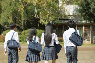 登校中の高校生の後姿の写真素材 [FYI01815615]