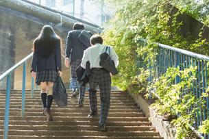 階段を登る高校生の後姿の写真素材 [FYI01815616]