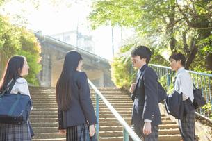 登校中の高校生の写真素材 [FYI01815708]