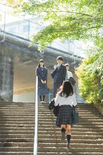 登校中の高校生の写真素材 [FYI01815790]