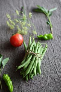 夏野菜の写真素材 [FYI01816200]