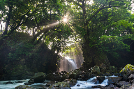 夫婦滝の写真素材 [FYI01816252]