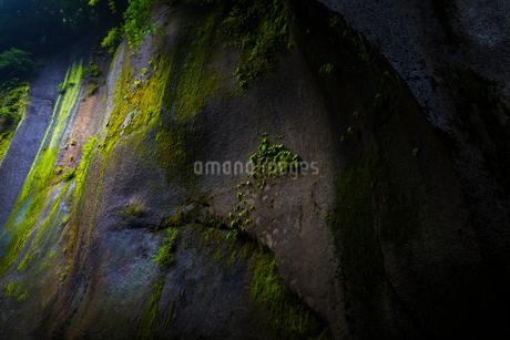 由布川峡谷の写真素材 [FYI01816276]