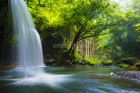 鍋ヶ滝の写真素材 [FYI01816280]
