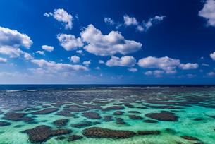 沖縄県 宮古島 イムギャーマリンガーデンの写真素材 [FYI01816329]