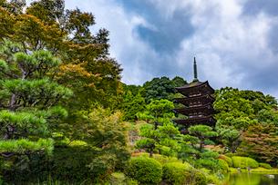 山口県 瑠璃光寺五重塔の写真素材 [FYI01816374]