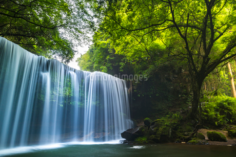 鍋ヶ滝の写真素材 [FYI01816452]