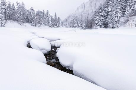 北海道 富良野岳 雪原の写真素材 [FYI01816463]