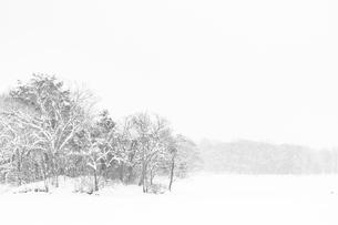 雪の大沼公園の写真素材 [FYI01816464]