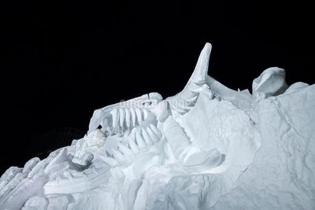 さっぽろ雪まつりの写真素材 [FYI01816474]