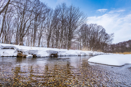 北海道 釧路川 源流域の写真素材 [FYI01816499]