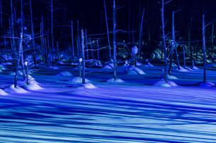 北海道 美瑛町 青い池の写真素材 [FYI01816501]