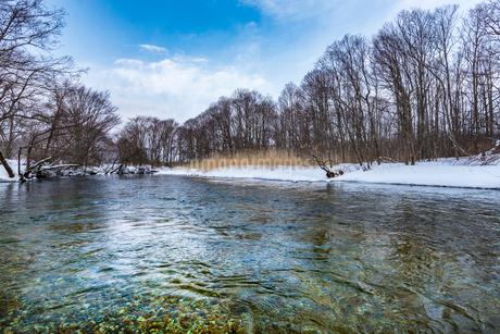 北海道 釧路川 源流域の写真素材 [FYI01816558]