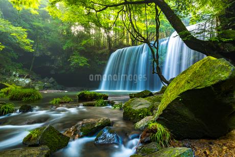 鍋ヶ滝の写真素材 [FYI01816574]