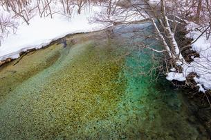 北海道 釧路川 源流域の写真素材 [FYI01816604]